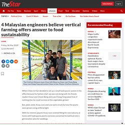 4 Malaysian engineers believe vertical farming offers answer to food sustainability