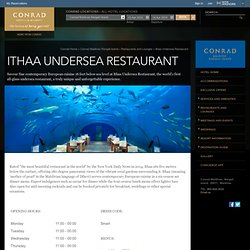Maldives Restaurants and Lounges - Conrad Maldives Rangali Island