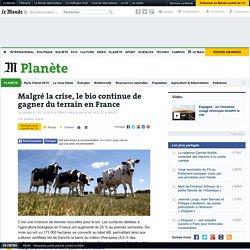 Malgré la crise, le bio gagne du terrain en France
