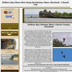 Mallows Bay Ghost Fleet along the Potomac River, Maryland - A kayak trip
