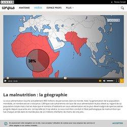 La malnutrition : la géographie - Corpus - réseau Canopé