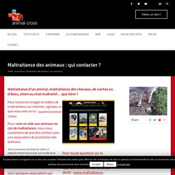 Maltraitance des animaux : qui contacter ? - Animal Cross - association de protection des animaux