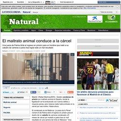 El maltrato animal conduce a la cárcel