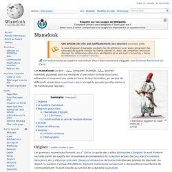IX ème siècle, Mamelouk, affranchis & mercenaires au service de l'Islam