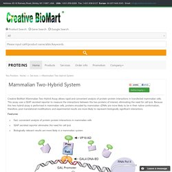 Mammalian Two-Hybrid System -Creative BioMart