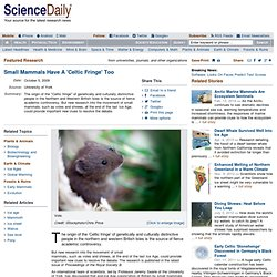 Small Mammals Have A 'Celtic Fringe' Too