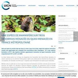 Une espèce de mammifère sur trois désormais menacée ou quasi menacée en France métropolitaine - UICN France