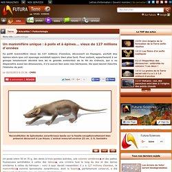 Un mammifère unique : à poils et à épines... vieux de 127 millions d'années