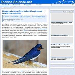 Oiseaux et mammifères suivent le rythme de la sélection naturelle