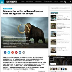 Mammoths suffered from diseases that are typical for people – HeritageDaily