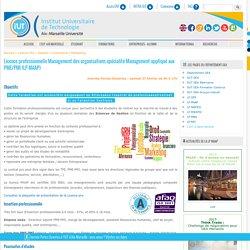 Licence pro MAAP - Management appliqué aux PME/PMI - Marseille - IUT d'Aix-Marseille