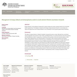 SOUTH AUSTRALIAN RESEARCH AND DEVELOPMENT INSTITUTE - 2010 - Management of Eutypa dieback and Botryosphaeria canker in south-wes