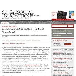 Can Management Consulting Help Small Firms Grow?