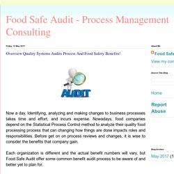 Food Safe Audit - Process Management Consulting: Overview Quality Systems Audits Process And Food Safety Benefits!
