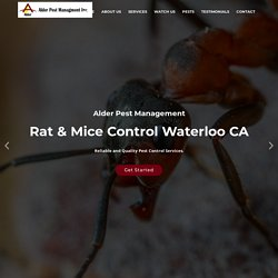 Pest Control Services Waterloo CA