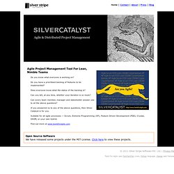 Silver Catalyst - Agile Project Management Tool: Manage distributed agile teams