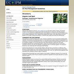 UNIVERSITY OF CALIFORNIA - 2005 - UC IPM - Strawberry Angular Leaf Spot Pathogen: Xanthomonas fragariae