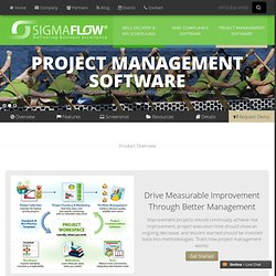 Business Process Improvement Software with SigmaXL Statistics Software