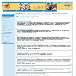 STG: Management des organisations