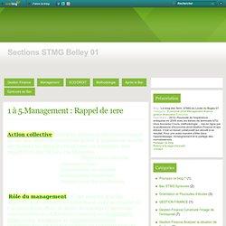 1 à 5.Management : Rappel de 1ere - Le blog des Term. STMG du Lycée du Bugey 01