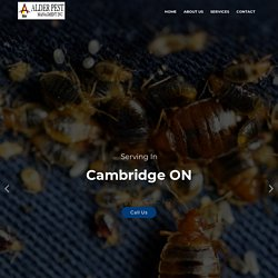 Pest Control Services Cambridge CA