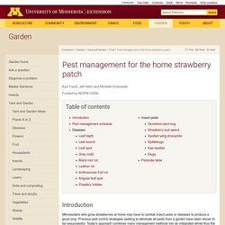 UNIVERSITY OF MINNESOTA - Pest management for the home strawberry patch.
