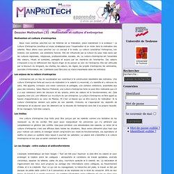 UTM - Master Pro 2 Management de Projets Technologiques -Dossier Motivation (3) : Motivation et culture d'entreprise