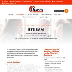 SAM - Soutien à l'Activité Managériale - Lycée Despiau - BTS - Mont-de-Marsan_40