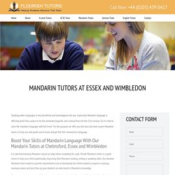 MandarinTutors & PrivateMandarinTuition Essex &Wimbledon