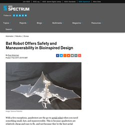 Bat Robot Offers Safety and Maneuverability in Bioinspired Design