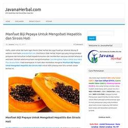Manfaat Biji Pepaya Mengobati Hepatitis