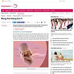 Mang thai tháng thứ 5 - Em bé bắt đầu đạp bụng mẹ