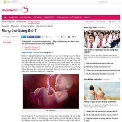 Mang thai tháng thứ 7 - Thai nhi 7 tháng tuổi