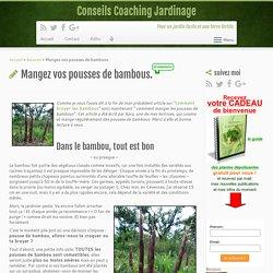 Mangez vos pousses de bambous.