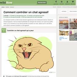 4 manières de contrôler un chat agressif