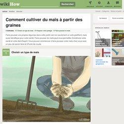 3 manières de cultiver du maïs à partir des graines