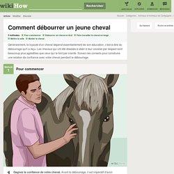 5 manières de débourrer un jeune cheval