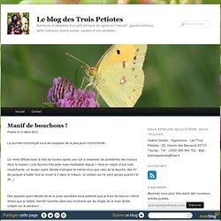Le blog des Trois Petiotes