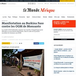 Manifestation au Burkina Faso contre les OGM de Monsanto