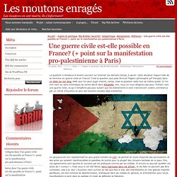 Une guerre civile est-elle possible en France? (+ point sur la manifestation pro-palestinienne à Paris)
