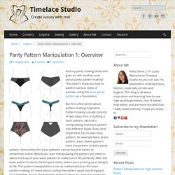 Panty Pattern Manipulation 1: Overview – Timelace Studio