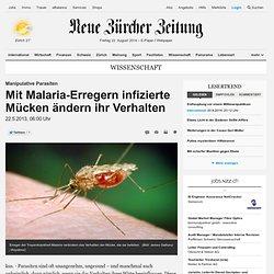 Manipulative Parasiten: Mit Malaria-Erregern infizierte Mücken ändern ihr Verhalten - Wissenschaft Hintergründe