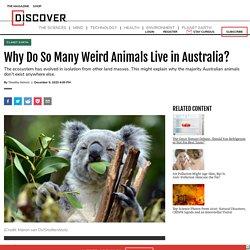 Why Do So Many Weird Animals Live in Australia?