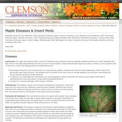 HGIC 2005 Maple Diseases & Insect Pests