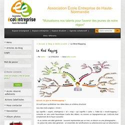 mind mapping par aeehn, association école entreprise
