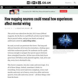 How mapping neurons could reveal how experiences affect mental wiring