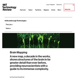 Brain Mapping - MIT Technology Review