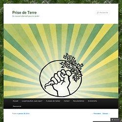 Légumes vivaces en maraîchage bio : une approche permaculturelle