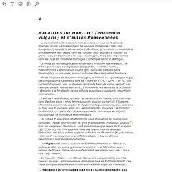 Lire en ligne Les maladies des plantes maraîchères, 3e éd. - V - MALADIES DU HARICOT (Phaseolus vulgaris) et d'autres Phaséolinées (Prévisualisation)