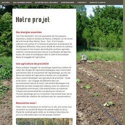 Légumes en production bio à Namur (Vévy-Wéron)